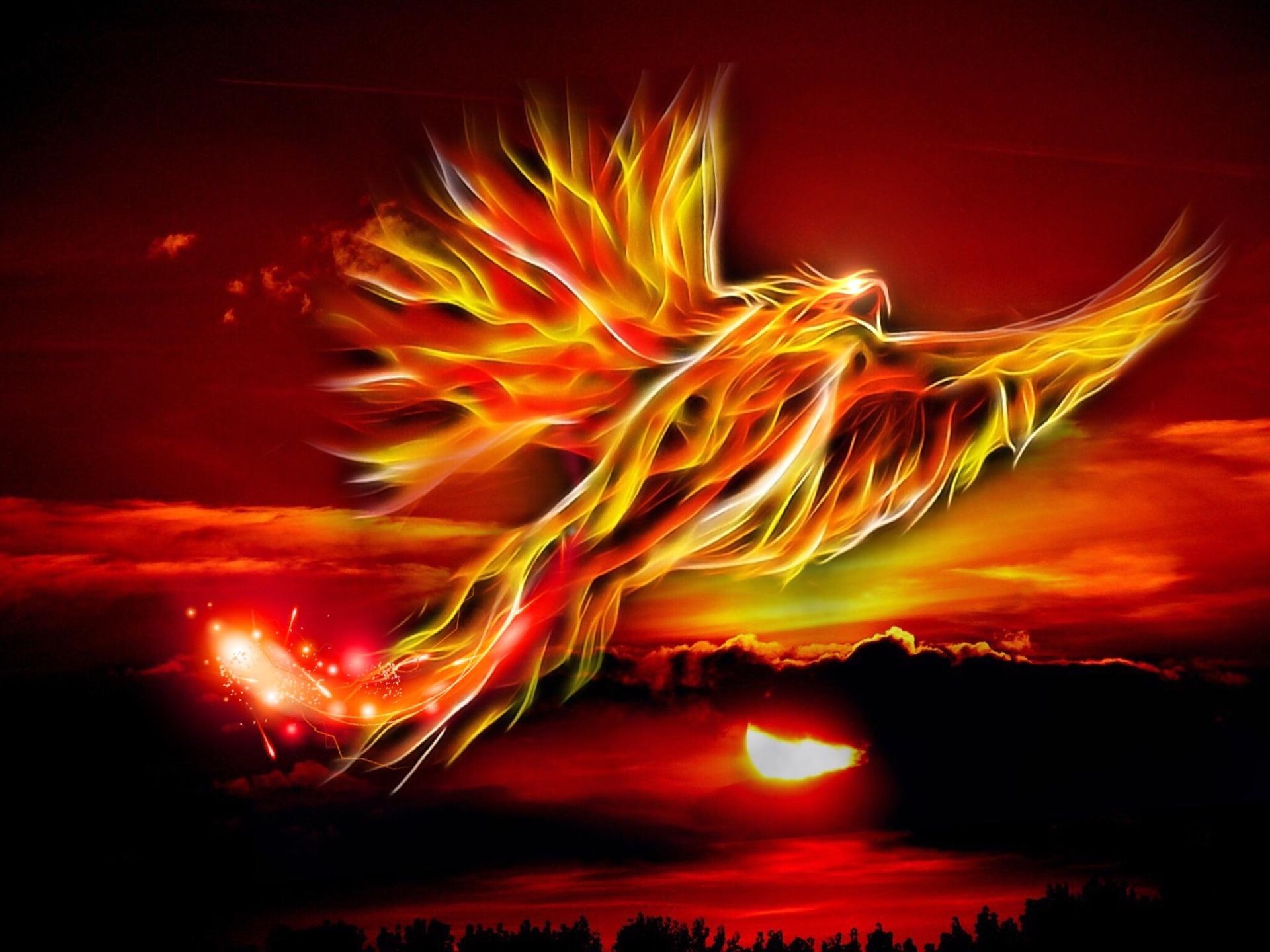 phoenix-500469_1920